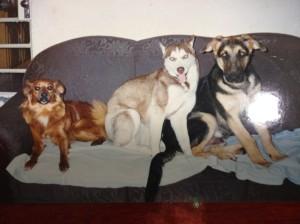 Da esquerda para a direita: Bolita, Hannah (mãe do Tobby) e Marcelinho.